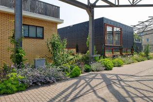 RAG building, green houses, plants and flowers (48 images)
